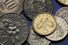 Coins of Singapore. Fruit salad plant (Monstera deliciosa) depicted in Singapore five cents coin Royalty Free Stock Image