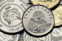 Coins of Singapore stock photo