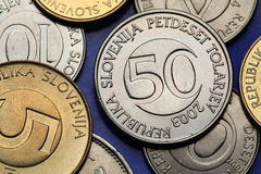 Coins of Slovenia Royalty Free Stock Image