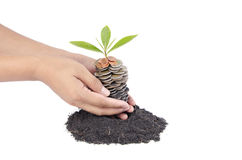 Coins in soil with young plant and human hand Royalty Free Stock Photos