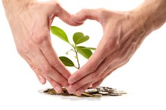 Coins sprout,  hands Stock Photo