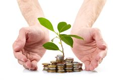 Coins sprout,  hands Royalty Free Stock Image