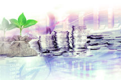 The Coins stacked  for business financial and stock investment b Royalty Free Stock Photos