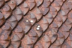 Coins thrown on roof made of beautiful red ornamental tiles royalty free stock photos