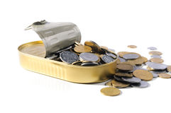 Coins in a tin can . Royalty Free Stock Images