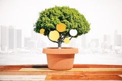 Coins on tree city background. Financial growth concept with coins growing on small green tree in pot on foggy city background. 3D Rendering Stock Photos