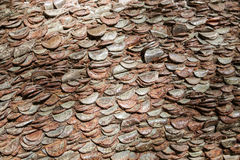 Coins in a tree trunk. Royalty Free Stock Images