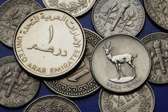 Coins of the United Arab Emirates Royalty Free Stock Photography