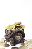 Coins and Wood Turtl Royalty Free Stock Images