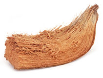 Coir of coconuts Royalty Free Stock Images