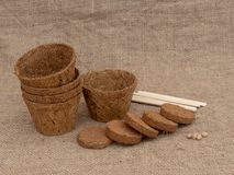 Coir plant pots and compressed compost on hessian. With wooden plant labels. Environmentally friendly spring gardening. Coir plant pots and compressed compost stock photos