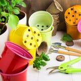 Coisas diferentes para a criação home do jardim com ferramentas e potenciômetros fotografia de stock royalty free