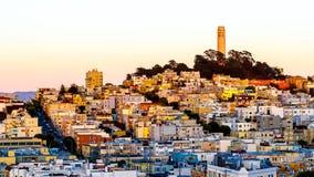 Coit torn och hus på kullen San Francisco på skymning Royaltyfri Bild