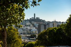 The Coit Tower from a high point on Lombardt Street, San Francisco royalty free stock photography