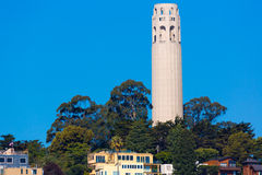 Coit Tower San Francisco California. In a blue sky day USA Stock Photography