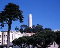 Coit Tower, San Francisco, USA. Coit Tower viewed from Washington Square,  San Francisco, Califrornia, USA Royalty Free Stock Photo