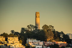 Coit tower San Francisco in sunset. View on the coit tower during sunset, Telegraph Hill, San Francisco Royalty Free Stock Photos
