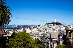 Coit Tower and Telegraph Hill Royalty Free Stock Images