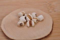 Coix-graine--une médecine de chinois traditionnel photos stock