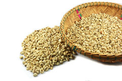 Coix seed Stock Images