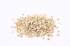 Coix seed Stock Photo