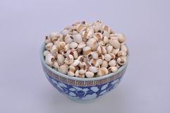 Coix-seeds in a bowl--a traditional chinese medicine Royalty Free Stock Photo