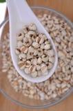 Coix-seme in un cucchiaio ceramico--una medicina di cinese tradizionale immagini stock libere da diritti