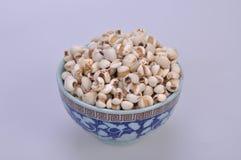Coix-semi in una ciotola--una medicina di cinese tradizionale fotografia stock libera da diritti