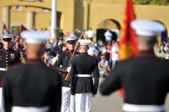 Cojinete militar Fotografía de archivo libre de regalías