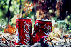 Coke cans. Two Coca Cola cans in the middle of forest Stock Image