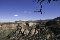 Coke ovens wide angle. Wide angle shot of the coke ovens formation in the Colorado National Monument with the craggy branch of a juniper in the top right Royalty Free Stock Images