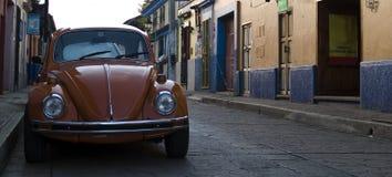 Coléoptère de Volkswagen Images libres de droits
