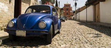 Coléoptère de Volkswagen Image libre de droits