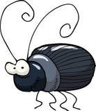 Coléoptère noir illustration stock