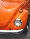 Coléoptère orange Photographie stock libre de droits