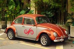Coléoptère Volkswagen Images libres de droits