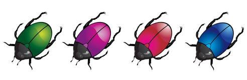 Coléoptères colorés Image stock