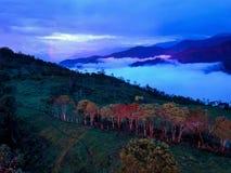 Colômbia este país tem muitas montanhas e muitas árvores imagem de stock