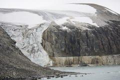Colônia dos pinguins que escalam à parte superior do ártico da montanha fotos de stock