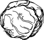 Col blanca Ilustración del vector libre illustration