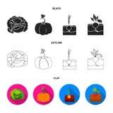 Col, calabaza, cebolla, buriak Iconos determinados de la colección de la planta en negro, plano, ejemplo de la acción del símbolo ilustración del vector