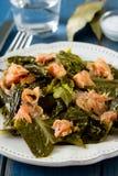 Col de la ensalada con el salmón ahumado Imagen de archivo libre de regalías