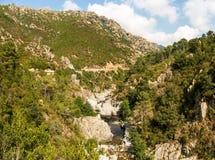 Col de Verde стоковые фотографии rf