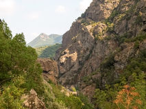 Col de Verde стоковое изображение