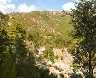 Col de Verde Royalty Free Stock Photo