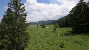 Col Du Marchairuz El 1447 m Jest wysokiej góry przepustka w jur górach w kantonie Vaud w Szwajcaria zbiory wideo