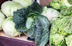 Col fresca verde de la nueva cosecha lista a la venta imagen de archivo libre de regalías