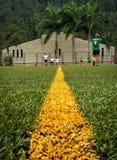 Colômbia; através de meus olhos Fotos de Stock