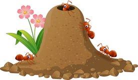 Colônia das formigas dos desenhos animados e monte da formiga Foto de Stock Royalty Free