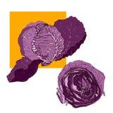 Col púrpura del vector: entero y en la sección en un cuadrado anaranjado i libre illustration